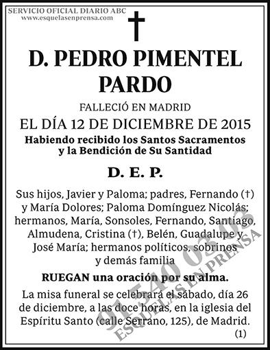 Pedro Pimentel Pardo